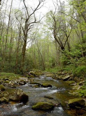 Rocky Fork Creek runs throughout Rocky Fork State Park in Unicoi County.
