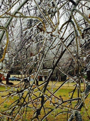 Photo sent from Cleveland, MS, to the National Weather Service
