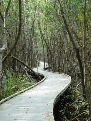 Eco Park in Cape Coral.