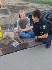 Police attempt to catch a loose dog on July 4, 2017