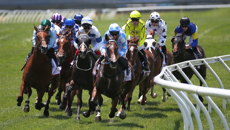 Horse racing betting near me betting las odds sports vegas