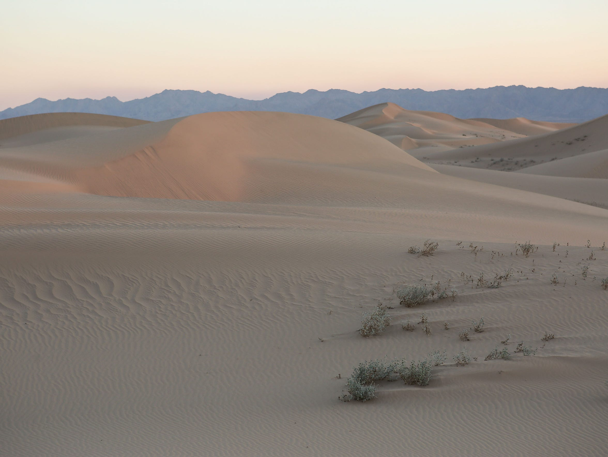 The Cadiz Dunes Wilderness was included in Mojave Trails