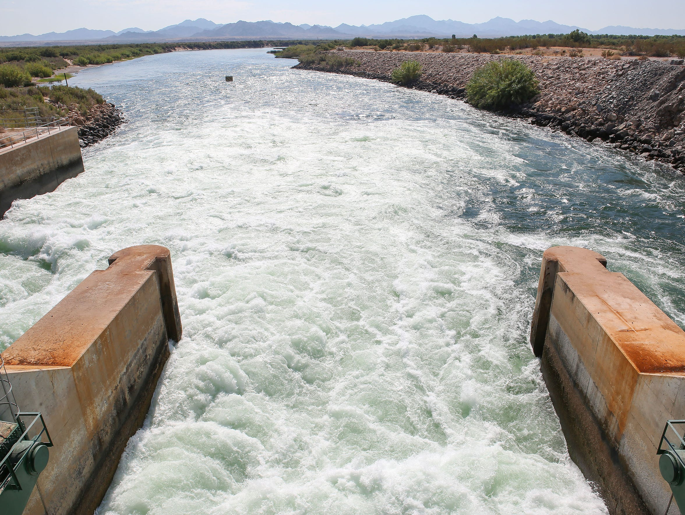 The Colorado River flows out of the Palo Verde Diversion