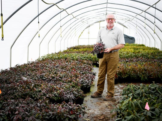Bill Jones, president of Carolina Native Nursery in Burnsville, discusses the recession at his farm February 16, 2018.