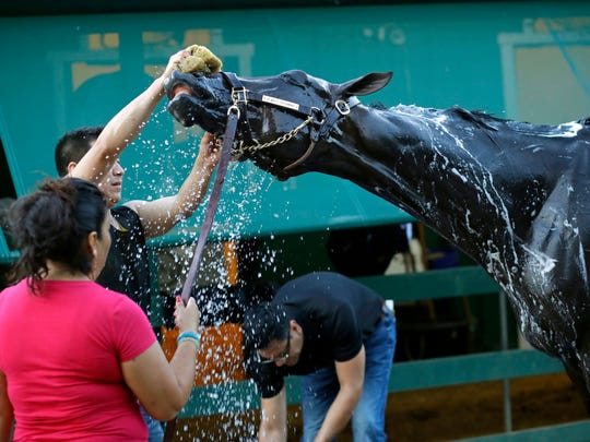 Kentucky Derby winner Always Dreaming is washed after