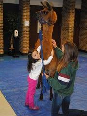 Preschooler Olivia Lawton reaches up to hug Cinnamon.