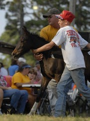 Cody Rhodes and Bryce Hurry (right) control a Chincoteague Pony foal while showing it at auction in 2010. Hurry's memory will be honored at this year's event in 2016.