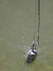 SAL0808-water warning 2