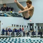 South Lyon Unified's Matt Meadows captured the 1-meter diving event with a total of 278.20 points against Stevenson.