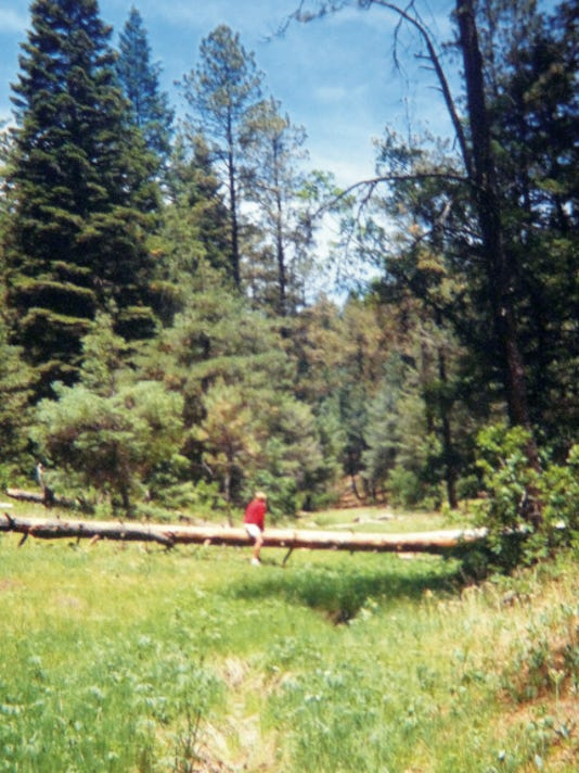 A log is all it takes for entertainment in the national forest.