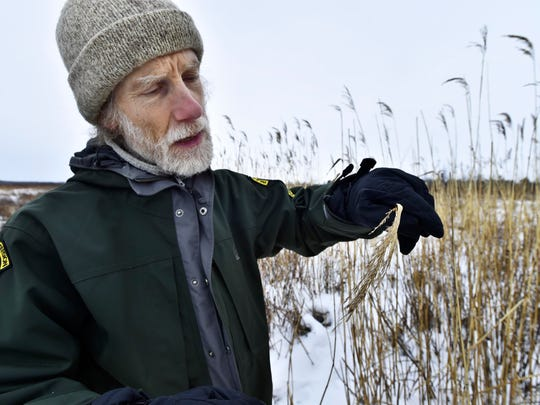 Bob Popp, a botanist with the Vermont Fish and Wildlife