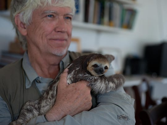 Russell A. Mittermeier  Institution: Conservation International  Animals studied: Primates, turtles.