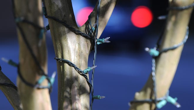 Holiday lights adorn tree branches along Summit Hill Drive.