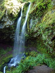 Covell Creek Falls can be found on the Angel Falls Loop in Southwest Washington near Randle.