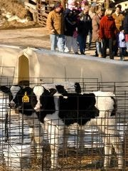 Not only does York Township's Perrydell Farm have ice