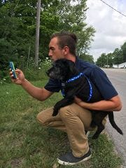 Phil Peckinpaugh, the superintendent of the Muncie Animal Shelter in Muncie, In., started a program for volunteers to walk shelter dogs while playing Pokemon Go. He's seen here with one of the shelter dogs playing Pokemon Go.
