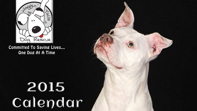 Shelly Houchins of Plymouth is a Waggin' Tails Dog Rescue member. She photographed dogs adopted through the organization for its 2015 calendar.