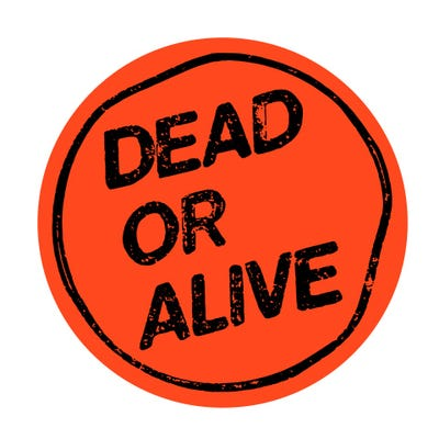 Dead or Alive Bar