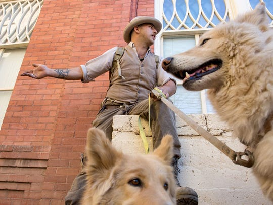 Bill Stoller sits with his wolf-hybrid dogs on Saturday, March 26, 2016, in Bisbee, Ariz.