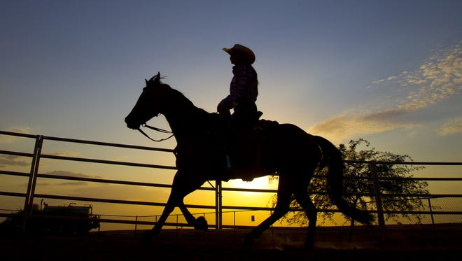 Queen Creek received a $935,000 grant from the Land and Water Conservation Fund in 2006 for the Horseshoe and Equestrian Centre.