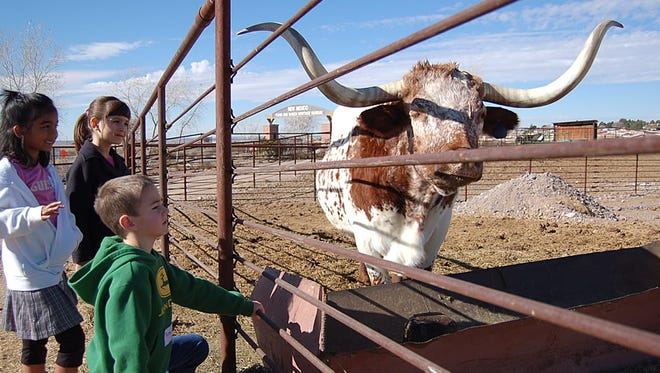 Don't be bored! Las Cruces boasts many things to do, such as a visit to the New Mexico Farm & Ranch Heritage Museum, above.