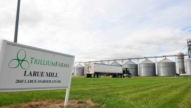 A truck drives through Trillium Farms site in LaRue, where one man admitted to using smuggled Guatemalan teens to work. The company has not been charged.