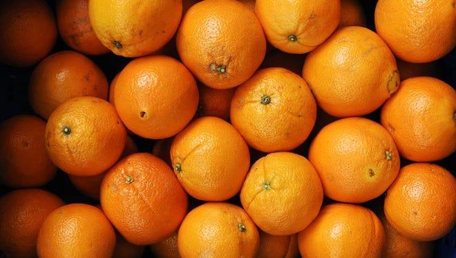 En la temporada 2012-2013, la cosecha de naranjas alcanzó las 133.6 millones de cajas y, en 2013-2014, cayó a 104.7 millones de cajas.