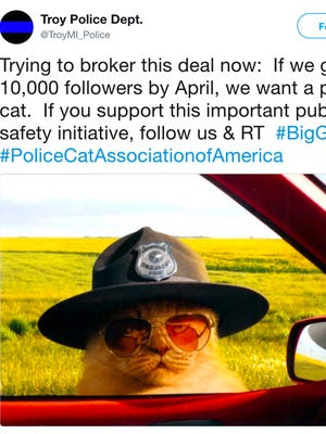 From the Twitter account of the Troy Police Department—Trying to broker this deal now: If we get 10,000 followers by April, we want a police cat. If you support this important public safety initiative, follow us & RT #BigGoals #PoliceCatAssociationofAmerica