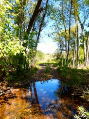 The centerpiece hike through Muleshoe Ranch is a 4.2