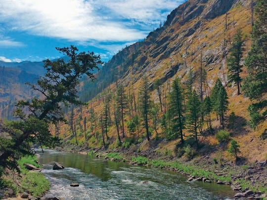 The Middle Fork of the Salmon River flows unfettered