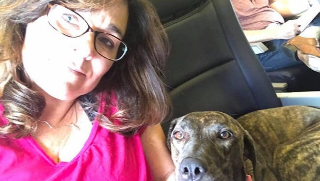 Cynthia Sooy turns to Facebook to find a playmate for her canine pal, Greta.