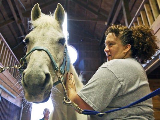 Exchange Horses For V_Prid.jpg