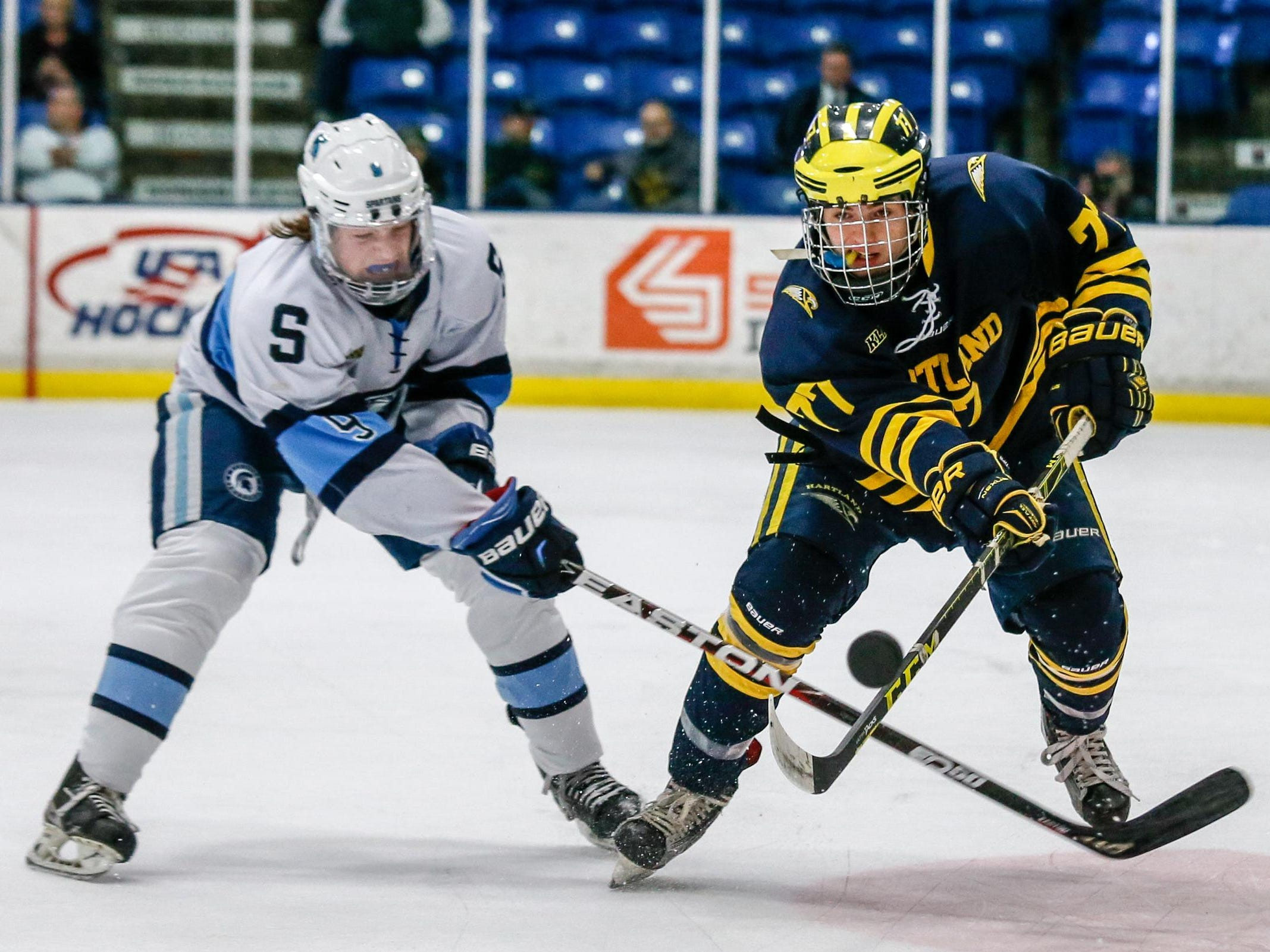 Hartland's Jake DeYoung, right, fights for the puck against Livonia Stevenson's Alex Walkuski Thursday at USA Hockey Arena.