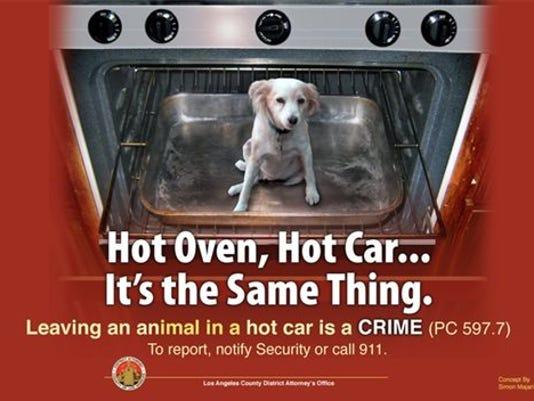 pets hot car