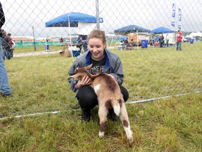 Carly Meed of North Liberty pets a baby goat at the North Liberty Blues and BBQ on Sunday, May 26, 2013.