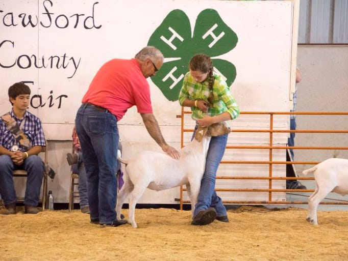 Wednesday at the Crawford County Fair.