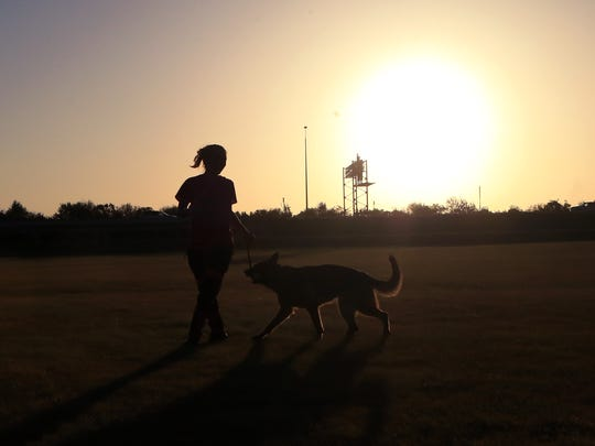 Windy Pool, training director and founder of C3 Hundesport, trains a dog Tuesday, Aug. 22, 2017, at Labonte Park.