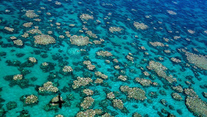 "An undated handout photo taken by Ed Roberts and released ARC Centre of Excellence for Coral Reef Studies on April 10, 2017 shows and aerial view of Cairns Townsville bleaching.   Coral has been bleached for two consecutive years by warming sea temperatures on Australia's Great Barrier Reef with ""zero prospect"" of recovery, scientists said on April 10, 2017, blaming climate change for the large-scale destruction."