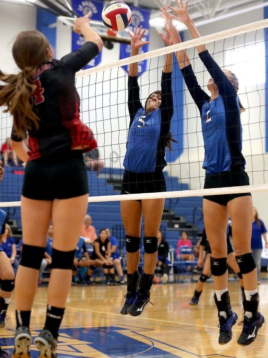 LakeView-Volleyball-Feeler-Diaz-2016.JPG