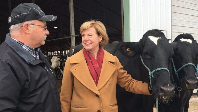 Sen. Tammy Baldwin speaks with a Wisconsin dairy farmer.