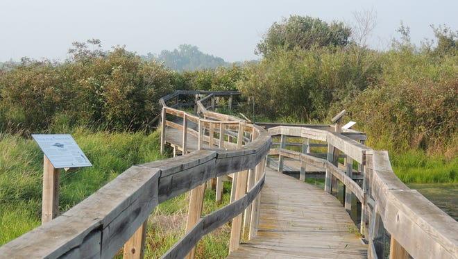 Elevated boardwalk trails lead through many areas of Woodland Dunes Nature Center in  Two Rivers, where you'll discover wetlands, prairies, deep forest, ponds, a butterfly garden, children's nature play area, observation tower and more.