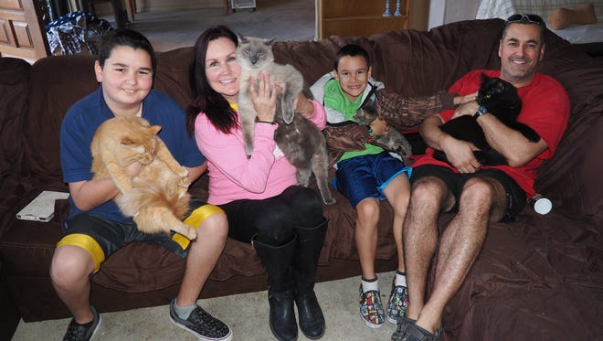 The Perry family with some of their furry friends. With Kelly spending 12 hours a day, seven days a week at Lucky Paws it becomes a family affair.