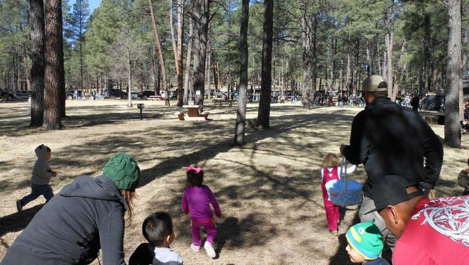 The count went down, the ribbon went up and hundreds of tots toddled as fast as their little legs would carry them into the Easter egg hunting grounds at Cedar Creek Saturday.