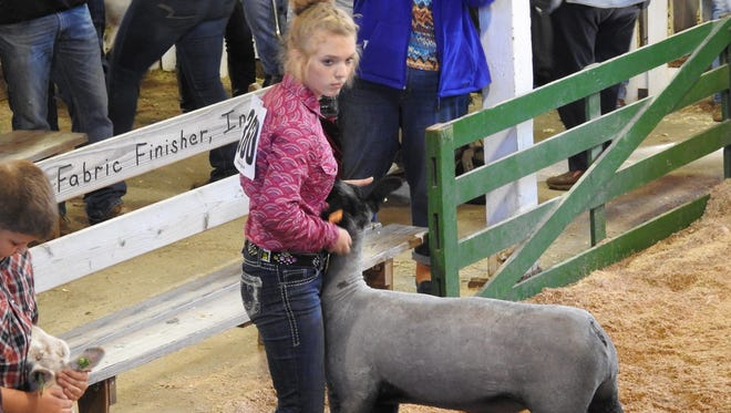 Macey Mizer, of Warsaw, showed this lamb, which won third place in its class during Tuesday's Market Lamb Show at the Coshocton County Fair.