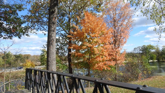 Leaves are changing colors and falling in REACT Memorial Park, signaling cooler temperatures and plenty of raking ahead for area residents.