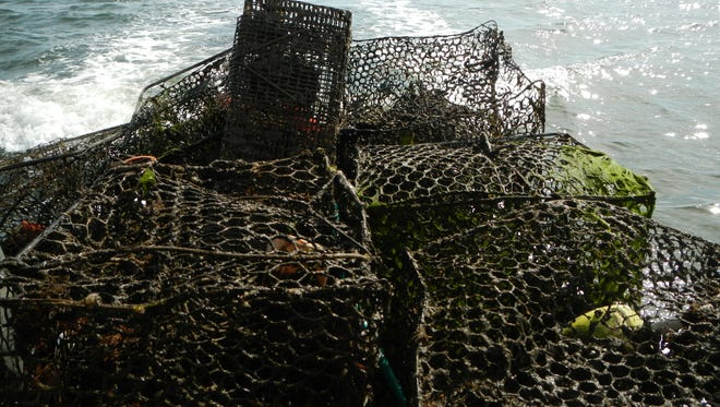 Crab pots pulled from Manklin Creek by Maryland Coastal Bays and Assateague Conservation Corps volunteers.
