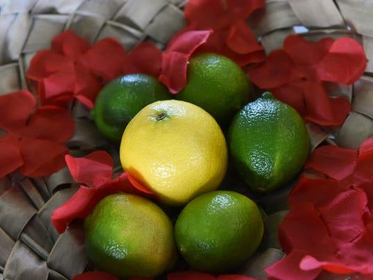 636005963733251510-citrus-14.jpg