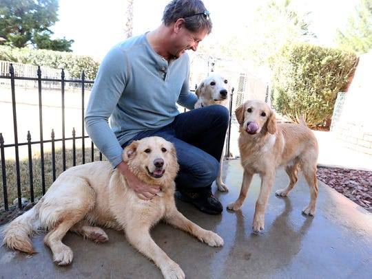 Colin Robson of Artesia, N.M., plays with golden retrievers
