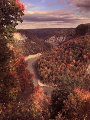 Letchworth State Park during a peak foliage week in the fall.