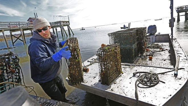 Commercial shellfishing in Scituate could become a reality as it is in Duxbury. John Clapp, of Blue Yonder Oysters, unloads oysters at the Mattakeeset Court landing in 2018.